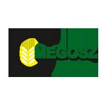 logo_megosz